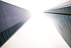 rascacielos6